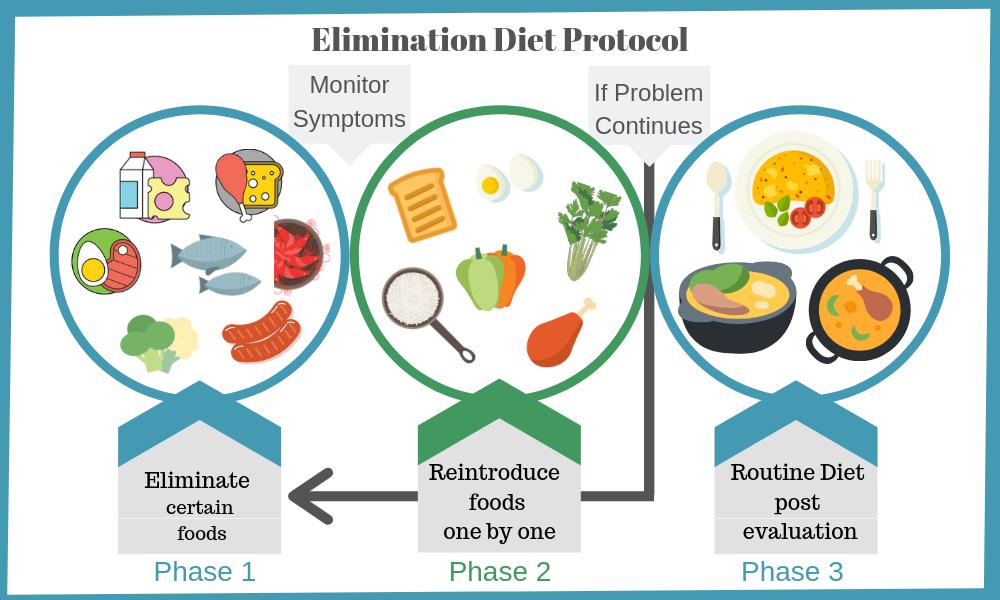 Elimination Diet Protocol